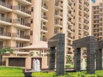 2637 sqft, 4 bhk Apartment in Satya The Hermitage Sector 103, Gurgaon at Rs. 1.1600 Cr