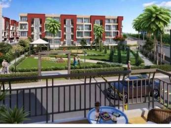 1143 sqft, 2 bhk BuilderFloor in Builder rps palm drive sector 88 Sector 88 Faridabad, Faridabad at Rs. 41.0000 Lacs
