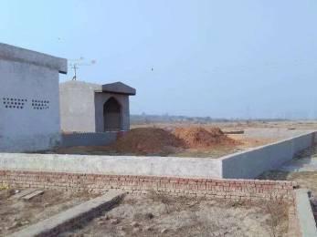 1800 sqft, Plot in Builder Project Vasant Kunj, Delhi at Rs. 6.0000 Lacs