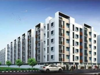 1000 sqft, 2 bhk Apartment in Builder Project Simhapuri Colony, Visakhapatnam at Rs. 33.0000 Lacs
