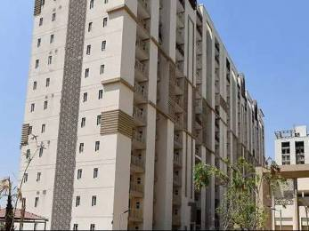 1650 sqft, 3 bhk Apartment in Builder Project Gurgaon Road, Gurgaon at Rs. 92.0000 Lacs