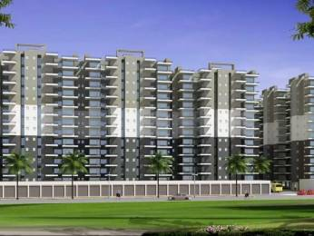 800 sqft, 2 bhk Apartment in Op Floridaa Sector 82, Faridabad at Rs. 24.0000 Lacs