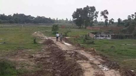1200 sqft, Plot in Builder Project Phulwari sharif, Patna at Rs. 16.0000 Lacs