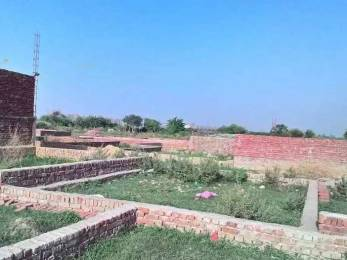 360 sqft, Plot in Builder shiv colony ismailpur Babarpur, Delhi at Rs. 8.0000 Lacs