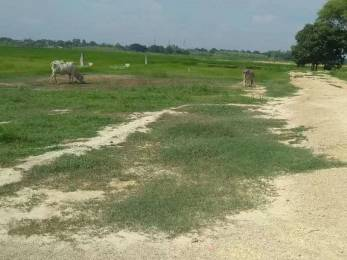 1000 sqft, Plot in Builder Himwati star city Reewa Road, Allahabad at Rs. 2.5000 Lacs