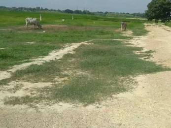 1000 sqft, Plot in Builder Himwati starcity Mahewa Rewa Road, Allahabad at Rs. 2.5000 Lacs
