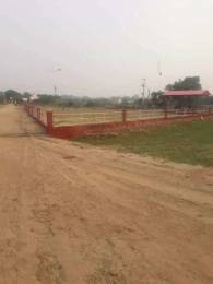 1656 sqft, Plot in Builder Canal Enclave Bhakhra Enclave, Patiala at Rs. 9.1665 Lacs