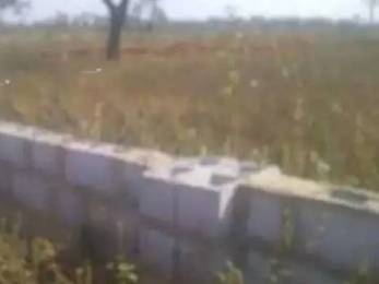 1980 sqft, Plot in Builder Project Shahbajpur Khalsa, Rewari at Rs. 15.0000 Lacs