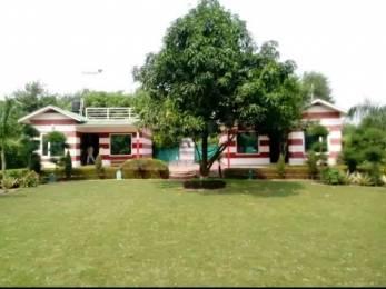5000 sqft, 4 bhk Villa in Builder B kumar and brothers Sainik Farms, Delhi at Rs. 3.7855 Lacs
