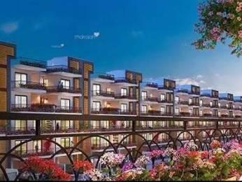 1255 sqft, 3 bhk BuilderFloor in Central Park Cerise Floors Sector 33 Sohna, Gurgaon at Rs. 76.0000 Lacs