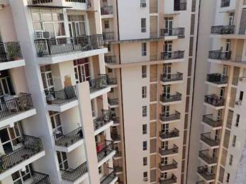 1825 sqft, 3 bhk Apartment in Sushma Elite Cross Dhakoli, Zirakpur at Rs. 63.0000 Lacs