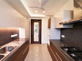 2250 sqft, 3 bhk BuilderFloor in Builder b kumar and brothers Green Park Extension, Delhi at Rs. 4.6000 Cr