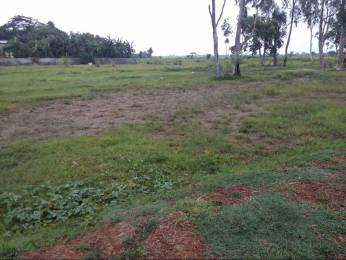 7000 sqft, Plot in Builder SOVARAMPUR PLOT Sovarampur Road, Balasore at Rs. 25.0000 Lacs