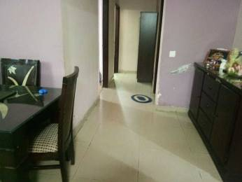 1000 sqft, 2 bhk Apartment in Bajwa Sunny Eco Sector 125 Mohali, Mohali at Rs. 10000