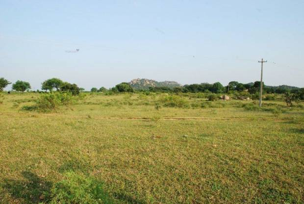 5850 sqft, Plot in Aliens Hub Kadthal, Hyderabad at Rs. 24.0564 Lacs