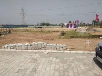 720 sqft, Plot in Builder Project Derabassi Barwala Road, Dera Bassi at Rs. 11.5920 Lacs