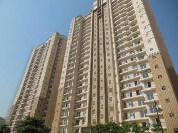 1685 sqft, 3 bhk Apartment in ATS Advantage Ahinsa Khand 1, Ghaziabad at Rs. 1.2700 Cr