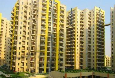 1303 sqft, 2 bhk Apartment in RPS Savana Sector 88, Faridabad at Rs. 54.0000 Lacs