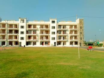 950 sqft, 2 bhk Apartment in Best Orchid Greens Sector 115 Mohali, Mohali at Rs. 22.9000 Lacs