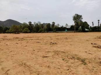 3546 sqft, Plot in Builder SRIKA GREEN HILL VIEW Sontyam Village, Visakhapatnam at Rs. 53.1900 Lacs