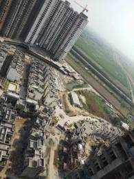 515 sqft, 1 bhk Apartment in Sikka Kaamna Greens Sector 143, Noida at Rs. 20.5000 Lacs