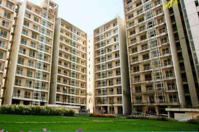 1356 sqft, 2 bhk Apartment in Jaypee The Pavilion Court Sector 128, Noida at Rs. 67.0000 Lacs
