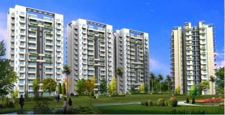 1266 sqft, 3 bhk Apartment in KLJ Platinum Plus Sector 77, Faridabad at Rs. 38.9000 Lacs