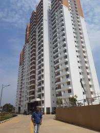 1129 sqft, 2 bhk Apartment in Prestige Misty Waters Hebbal, Bangalore at Rs. 32000