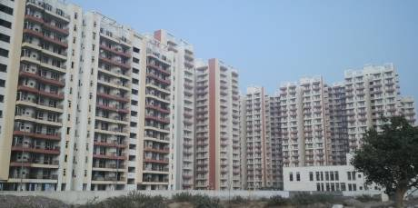 1387 sqft, 2 bhk Apartment in KLJ Greens Sector 77, Faridabad at Rs. 41.0000 Lacs