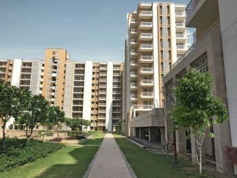 1300 sqft, 2 bhk Apartment in Builder Project Sector 84, Faridabad at Rs. 50.0000 Lacs