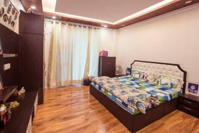 755 sqft, 1 bhk Apartment in Builder Mashobra Hills Mashobra Moolkoti Road, Shimla at Rs. 42.0000 Lacs