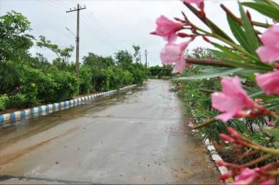 2160 sqft, Plot in Builder Project Chandragiri, Tirupati at Rs. 13.2000 Lacs
