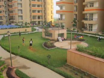 1595 sqft, 3 bhk Apartment in Cosmos Shivalik Homes UPSIDC Surajpur Site, Greater Noida at Rs. 47.8341 Lacs