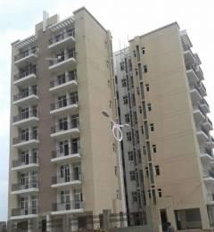 1576 sqft, 3 bhk BuilderFloor in Umang Summer Palms Sector 86, Faridabad at Rs. 15000