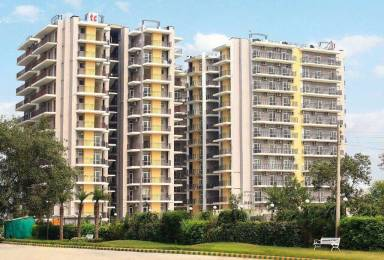 1350 sqft, 2 bhk Apartment in Trishla City Bhabat, Zirakpur at Rs. 48.6000 Lacs
