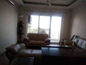 2500 sqft, 3 bhk Apartment in Shalimar Imperial Hazratganj, Lucknow at Rs. 48000