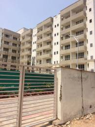 600 sqft, 1 bhk Apartment in Builder world One Sector 115 Mohali, Mohali at Rs. 14.9000 Lacs