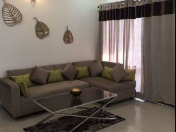 1500 sqft, 3 bhk Apartment in Builder Project Sector 126 Mohali, Mohali at Rs. 31.9500 Lacs