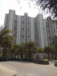 550 sqft, 1 bhk Apartment in Builder Lodha Amara Kolset Road Thane West Kolshet Road Thane West, Mumbai at Rs. 17000