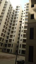 430 sqft, 1 bhk Apartment in Builder Lodha Taloja taloja by pass road mumbai Palava, Mumbai at Rs. 30.0000 Lacs