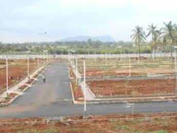 1440 sqft, Plot in Builder Project Tadikonda, Guntur at Rs. 16.8000 Lacs