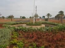 B Amarendhar