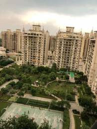 2200 sqft, 4 bhk Apartment in ATS Paradiso CHI 4, Greater Noida at Rs. 35000