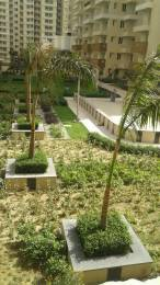 1095 sqft, 2 bhk Apartment in Omkar Royal Nest Knowledge Park, Greater Noida at Rs. 33.0000 Lacs