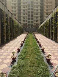 1425 sqft, 3 bhk Apartment in Omkar Royal Nest Knowledge Park, Greater Noida at Rs. 48.0000 Lacs