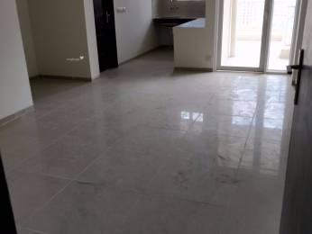 1085 sqft, 2 bhk Apartment in Builder Ajnara Homes Greater Noida Noida Extension Greater noida, Noida at Rs. 40.1450 Lacs