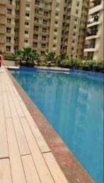1560 sqft, 3 bhk Apartment in Builder Gaur City 6th Avenue Gaur City Noida Extension Greater Noida Gaur City 1, Greater Noida at Rs. 62.0000 Lacs