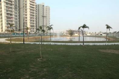 1175 sqft, 2 bhk Apartment in Builder Gaur City 5th Avenue Noida Extension Greater Noida Gaur City 1, Greater Noida at Rs. 9500