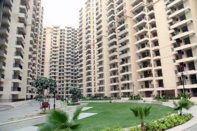 1055 sqft, 2 bhk Apartment in Builder Gaur City 2 12th Avenue Gaur City 2 Noida Extension Gaur City 1 Road, Noida at Rs. 36.5000 Lacs
