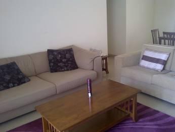 1450 sqft, 3 bhk Apartment in Darode Blossom Bouleward Koregaon Park, Pune at Rs. 60000